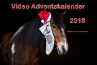 Bild: Unser 8. Video Pferde Adventskalender 2018