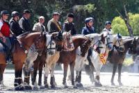 "Bild: Deutsche Meisterschaften ""Working Equitation""  High Light beim Reitverein Thierhaupten"